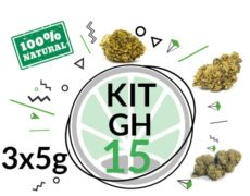 Kit de Prueba GH 15 gramos de Cannabis CBD por 3 variedades