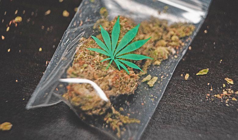 marihuana cbd california haze