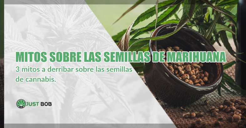 mitos a derribar sobre las semillas de marihuana cbd