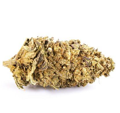 Flor de Marihuana CBD Purple GG#4