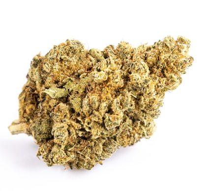 Cogollo CBD de Purple GG#4 variedad de Cannabis CBD legal