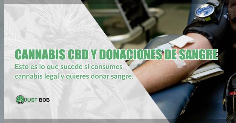 Cannabis cbd y donaciones voluntarias de sangre