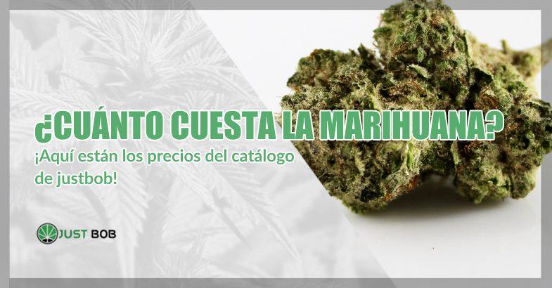 Cuánto cuesta la marihuana cbd