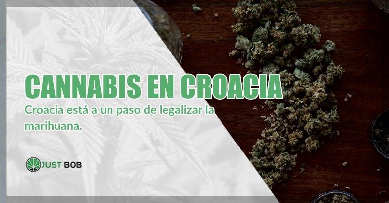 marihuana cbd en croacia