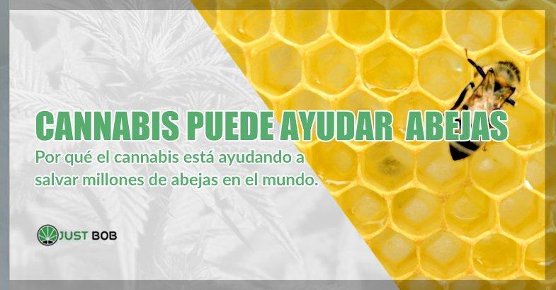 cannabis cbd puede salvar abejas