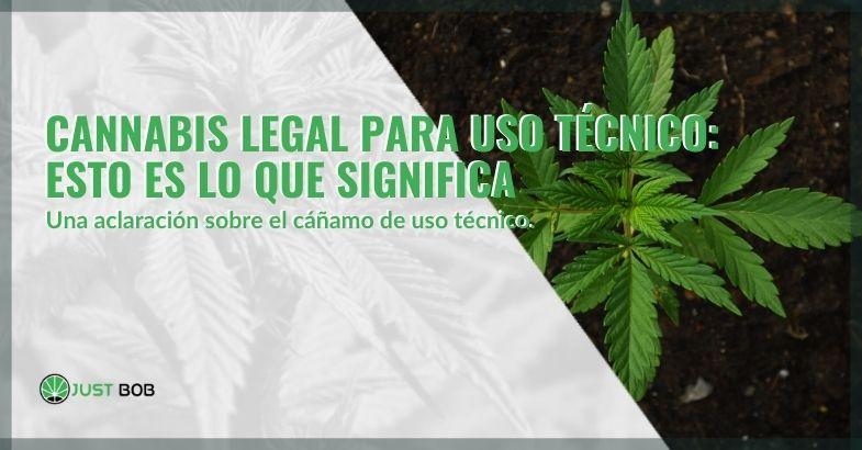 Cannabis legal para uso técnico: esto es lo que significa
