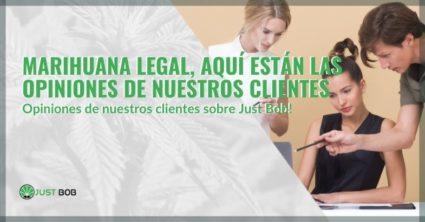 Marihuana legal, aquí están las opiniones de nuestros clientes
