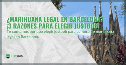 ¿Marihuana legal en Barcelona? ¡3 razones para elegir Justbob!