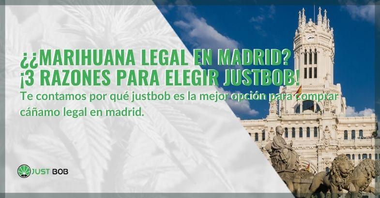 ¿Marihuana legal en Madrid? ¡3 razones para elegir Justbob!