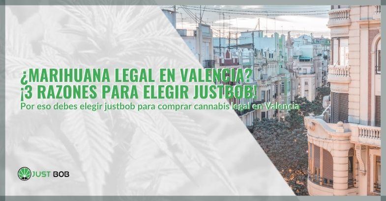 ¿Marihuana legal en Valencia? ¡3 razones para elegir Justbob!