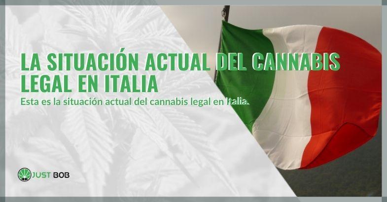 La situación actual del cannabis legal en Italia