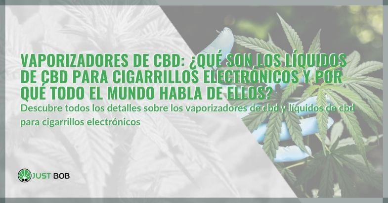 Vaporizadores de CBD: ¿qué son los líquidos de CBD para cigarrillos electrónicos y por qué todo el mundo habla de ellos?