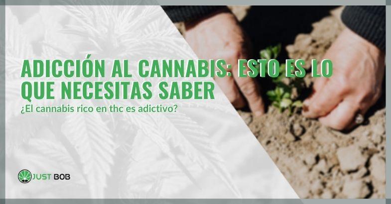Adicción al cannabis: esto es lo que necesitas saber