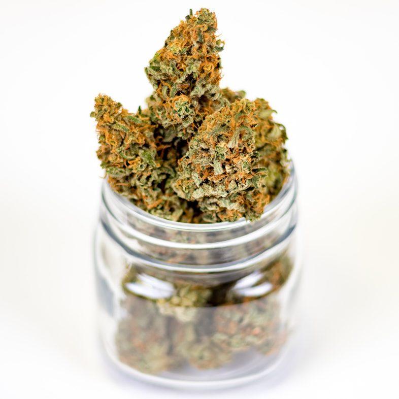La fuerte demanda más una prohibición permitieron la venta de marihuana