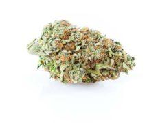 Cannabis de Cbg Zkittles
