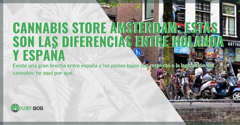 Cannabis store en Amsterdam: veamos las diferencias con España