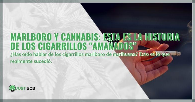 """Marlboro y Cannabis: esta es la historia de los cigarrillos """"amañados"""""""