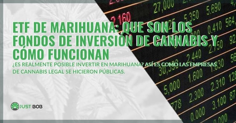 ¿Qué son los fondos de inversión de cannabis y cómo funcionan?