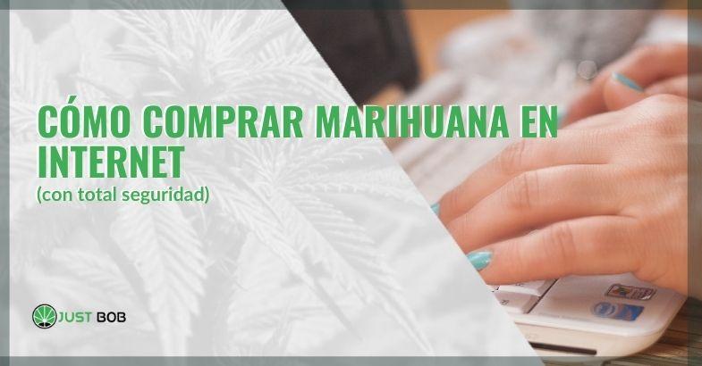 ¿Cómo se puede comprar marihuana legal en Internet de forma segura?