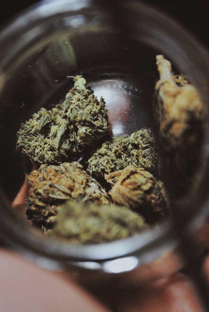 ¿Cuáles son los efectos de los cogollos de marihuana?