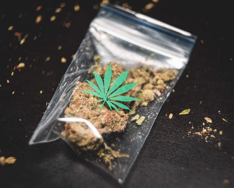 Hierba con alto contenido de THC