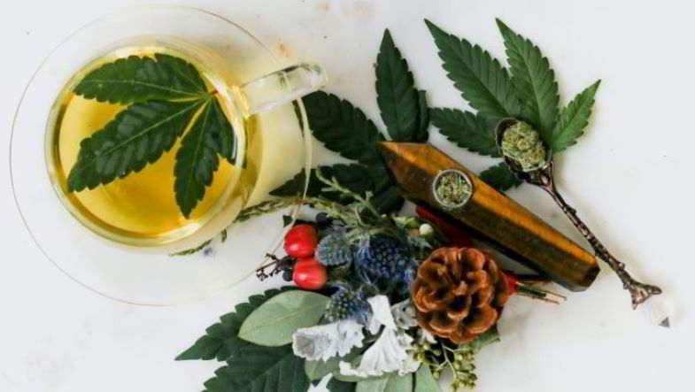 Alcohol vs cannabis medicinal.