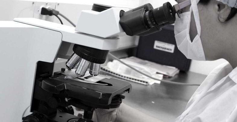 Cannabis vasodilatador y pruebas de laboratorio.
