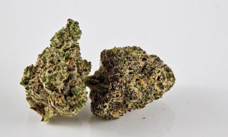 La mejor hierba legal de 2021 es Purple GG # 4