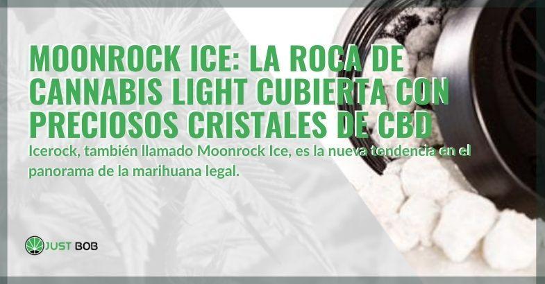 Icerock, cubierto de preciosos cristales de CBD