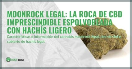 CBD Rock espolvoreado con hachís ligero: Legal Moonrock