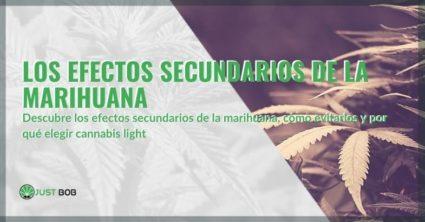Estos son los efectos secundarios de la marihuana.