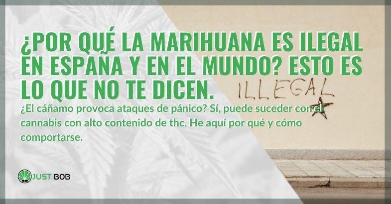 ¡Veamos por qué en España y también en otros países la marihuana es ilegal!