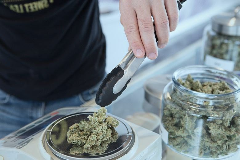 Las mejores variedades de cannabis en el Boerejongens Coffeeshop Center