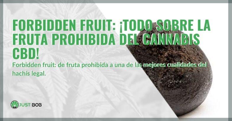 Forbidden fruit: una de las mejores cualidades del hachís legal.