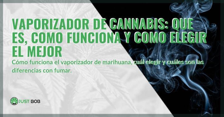 Qué es el vaporizador de cannabis y cómo utilizarlo.