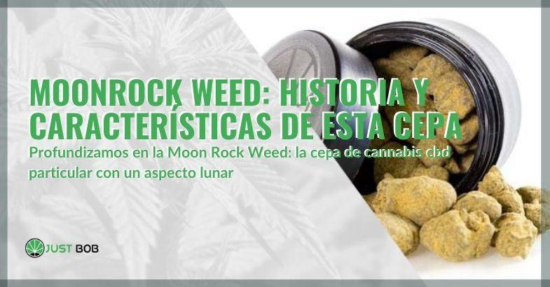 Más información sobre la luz de cannabis MoonRock Weed