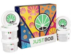 Kit Back2Work gold de marihuana CBD por 5 variedades