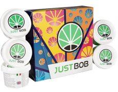 Kit Back2Work platinum de cannabis CBD de las mejores cualidades