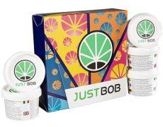 Kit Back2Work silver con 17 gramos de Cannabis CBD