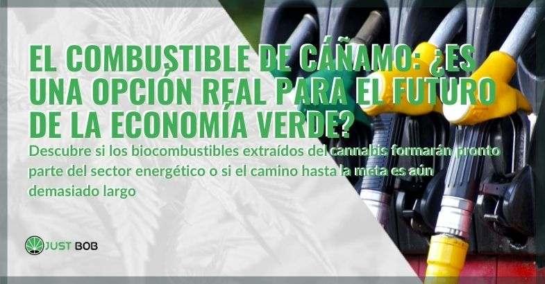 ¿Es el biocombustible de cáñamo el futuro de la economía verde?