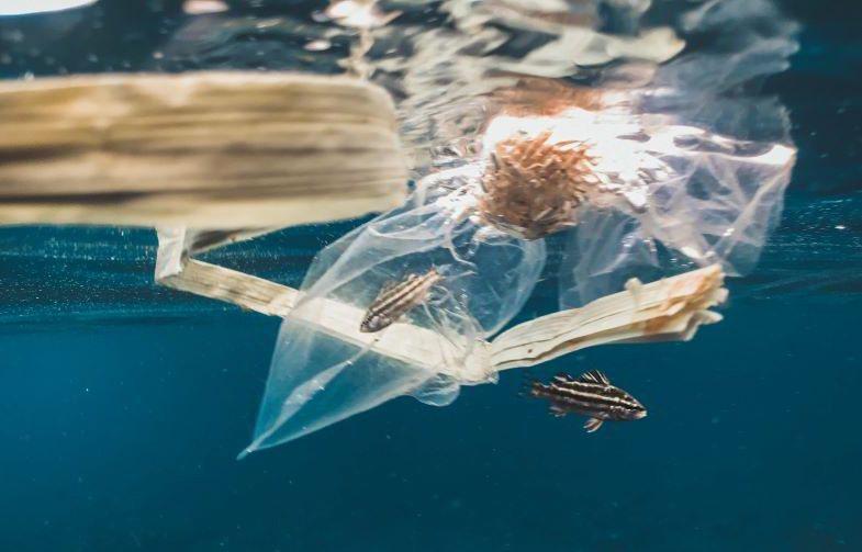 Plástico químico que contamina el medio ambiente, para ser reemplazado por el de cáñamo.
